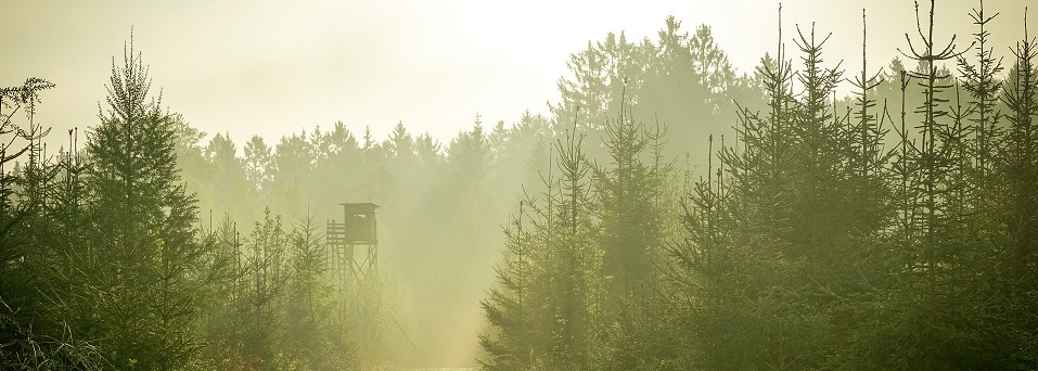http://jaegerverein-kaufbeuren.de/wp-content/uploads/2019/05/watch-tower-802102_1920.jpg